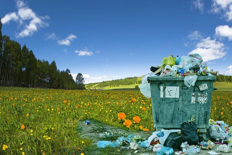 Proper Waste Disposal